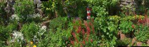 Garten_Benninghoff1